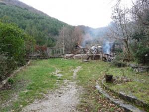 Regione: incendio Diecimare, ass. Romano, solidarietà al WWF